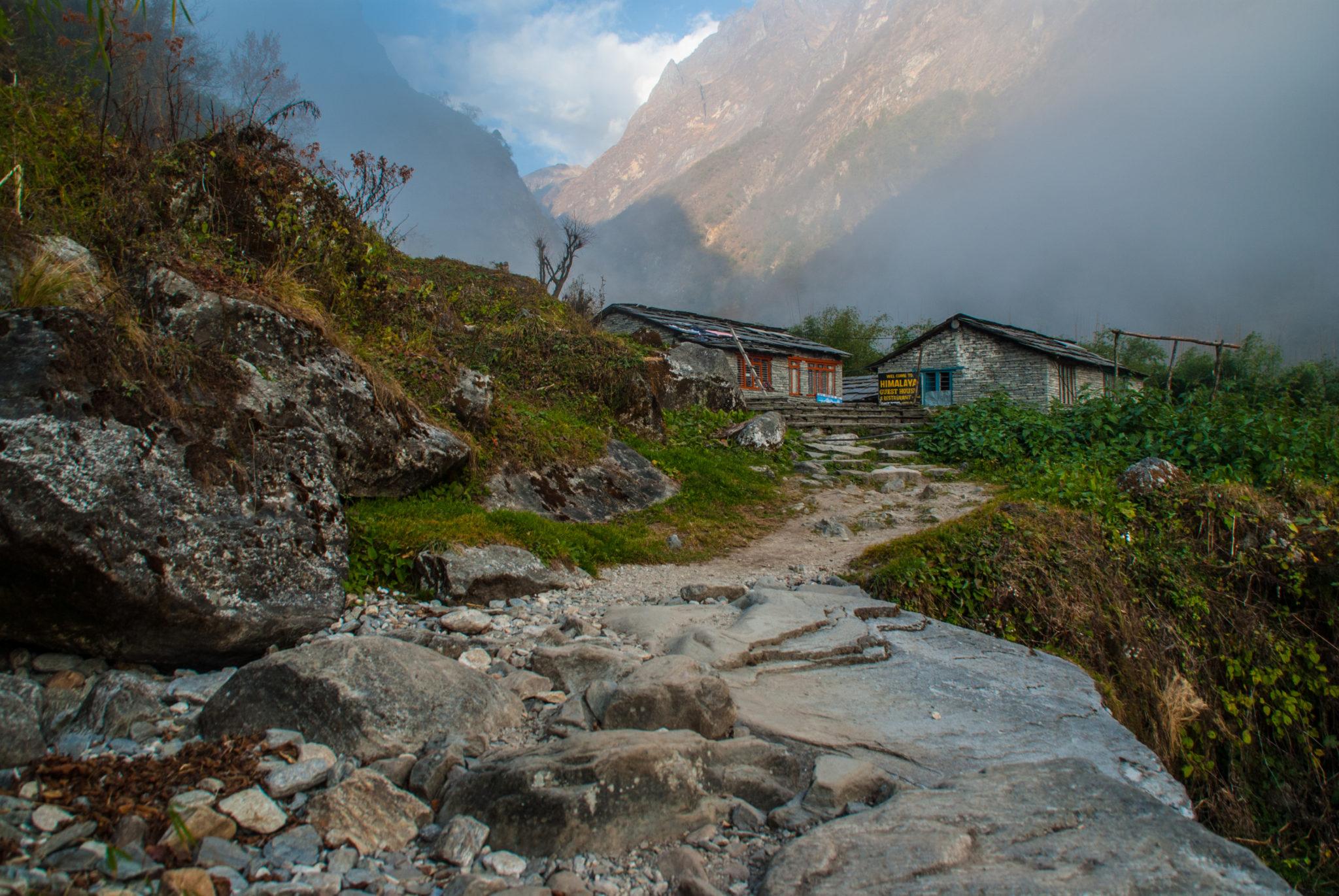 """L'auberge """"ratatouille"""" des Annapurnas"""
