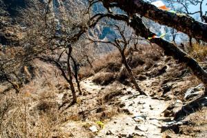 Paysage au népal