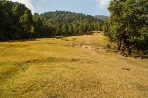 Une prairie vers les Annapurnas