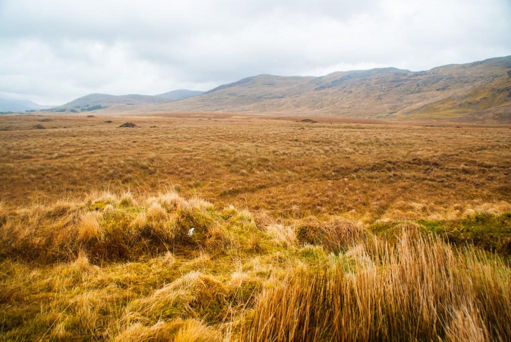 La tourbe en irlande
