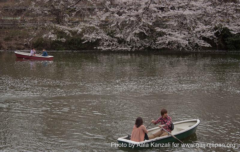 Balade en bateau à Tokyo