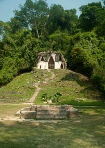 Maison dans la jungle
