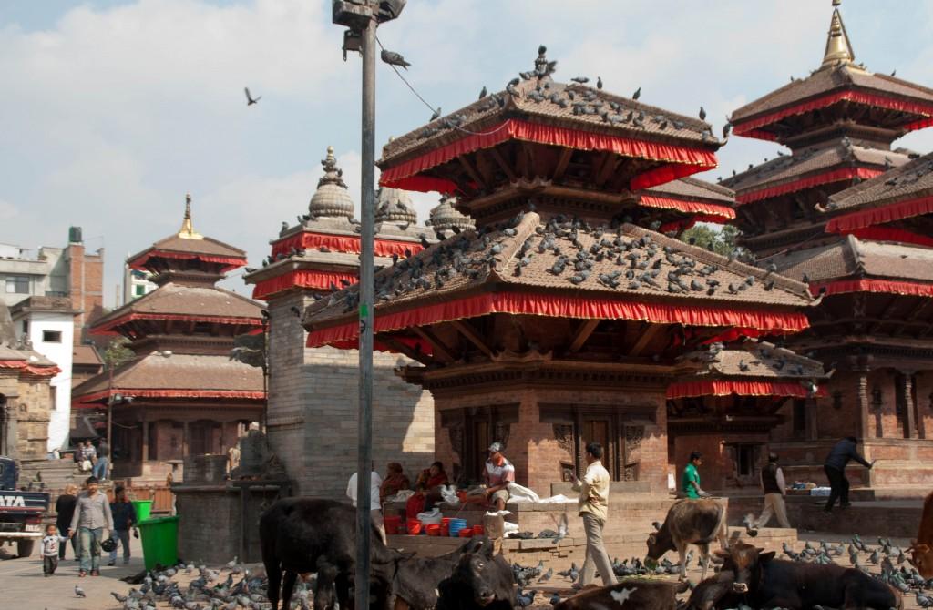 centre-katmandou