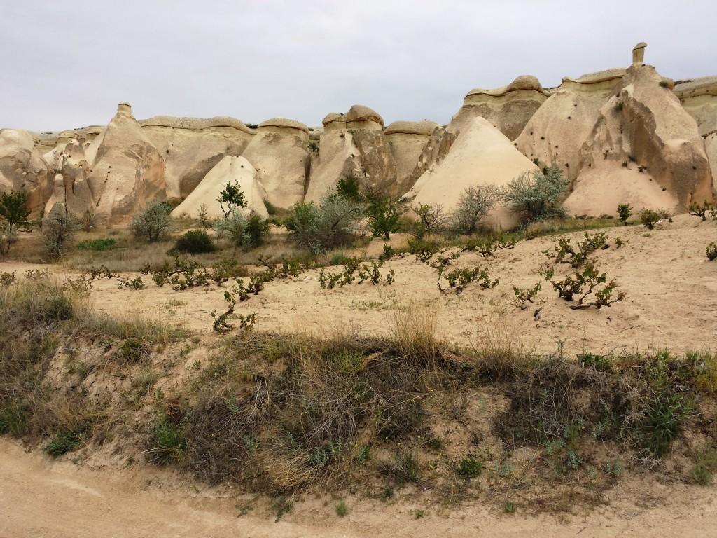 paysage-cappadoce