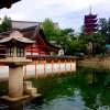 sanctuaire à miyagima