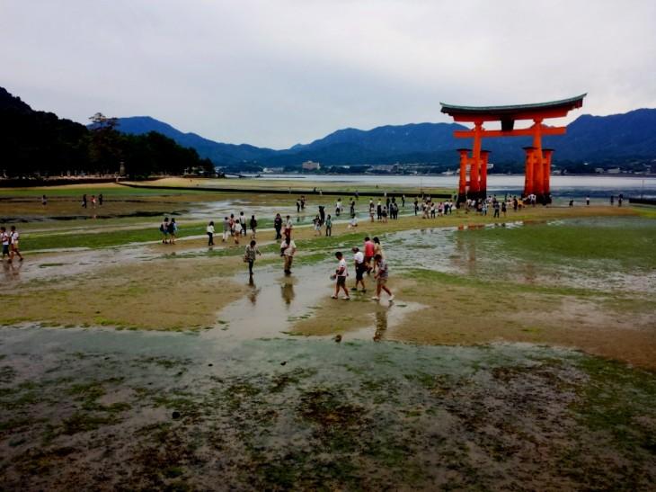 tori-miyajima