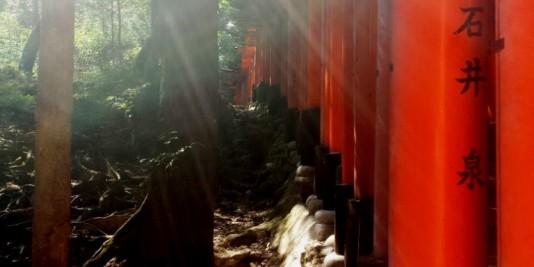 Fushimi-inari-kyoto-14