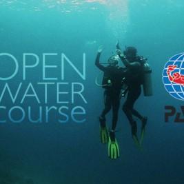 padi-open-water