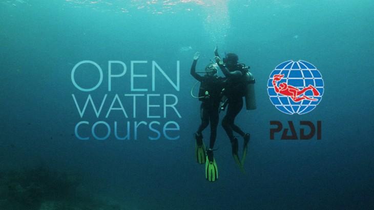 Cours de plongée open water