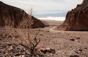 Desert dans l'ouest américain