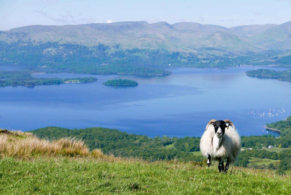 Voyage en ecosse, randonnée de la West Highland Way