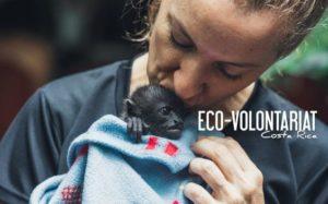 Les bons conseils des Best Jobers pour faire de l'éco-volontariat au Costa-Rica