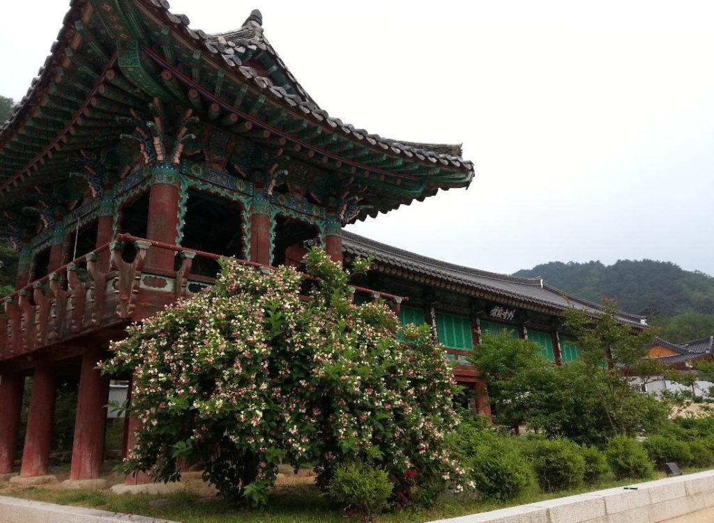 Temple Stay Sinhungsa Corée du Sud