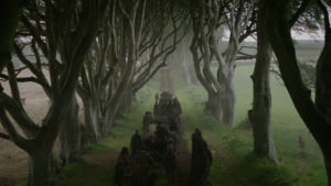 dark hedges dans GOT