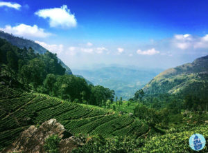 Montagnes au Sri Lanka