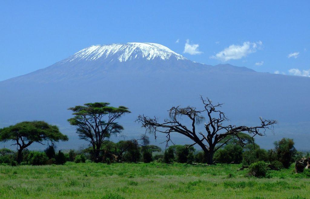 vue sur le kilimanjaro